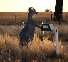 Aussie Mailbox by SharonD