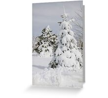 Prettiest snow of the year Greeting Card