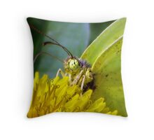 Macro Butterfly From Mars Throw Pillow
