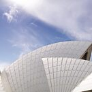 Sydney Opera House by groophics