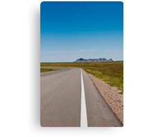 white lines Canvas Print