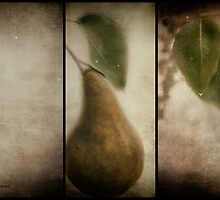Pear by KatMagic Photography