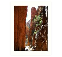 Standley Chasm, West MacDonnell National Park Art Print