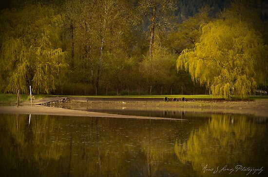 Peaceful Easy Feeling by Annie Lemay  Photography