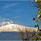 Viva Sicilia by Janone