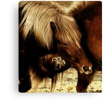 Heads down, you win Canvas Print