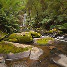 The Rocks - Hopetoun Falls by smylie