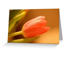 Kind & Gentle Greeting Card