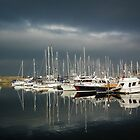 Whitehaven Marina by seanduffy
