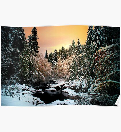 Brice Creek Sunrise And Snow Poster
