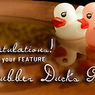 2012 Rubber Ducks Feature Banner by Susana Weber