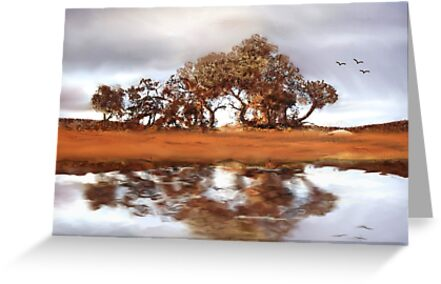 Country Reflections by Pam Amos