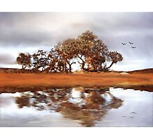 Country Reflections Photographic Print