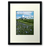 Roadside Blues Framed Print