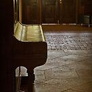 The Piano by Martie Venter