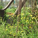 Spring Wildflowers and Rustic Garden Tools by Marlin