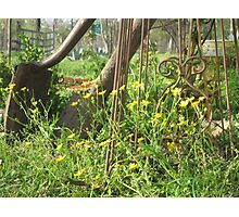Spring Wildflowers and Rustic Garden Tools Photographic Print