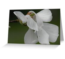 Like White Vales Blowing in the Wind Greeting Card