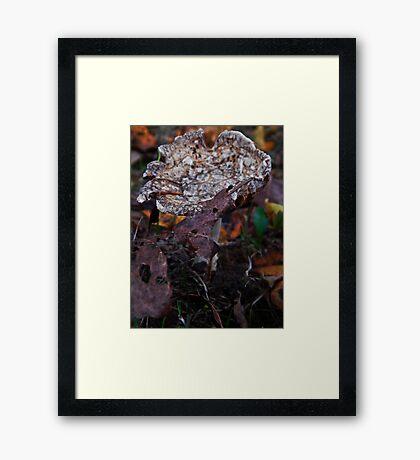 Mushroom Kingdom (3915) Framed Print