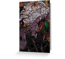 Mushroom Kingdom (3915) Greeting Card