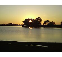 HATCHETS POND, NEW FOREST Photographic Print