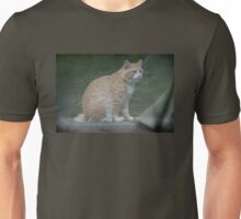 Marvelous Max The Marmalade Cat Unisex T-Shirt