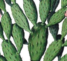 Vintage Cactus botanical illustration Sticker