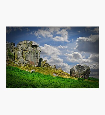 The Cow and Calf Photographic Print