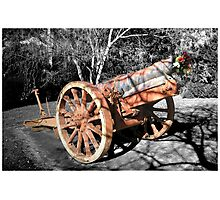 Now silent cannon. Photographic Print