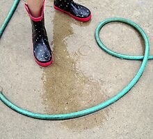 The Water Hose by emilycolors