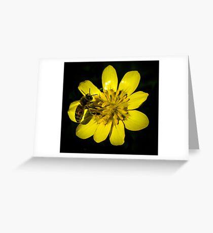 Handling Beez-Ness Greeting Card