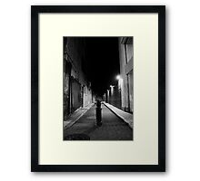 Pole Framed Print