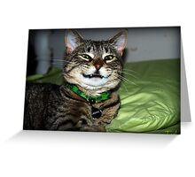 Come On.....Smile:) Greeting Card