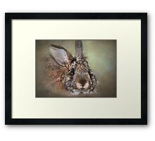 Give Me Back My Bonnet Framed Print