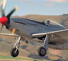 P-51 Mustang by Anthony Woolley