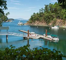 Tod Inlet, Vancouver Island by SusanAdey