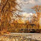 The Bridge Along Highway 203 by Dale Lockwood