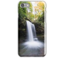 Grotto Falls – Great Smoky Mountains National Park, Tennessee iPhone Case/Skin