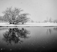 SnowAlone by Bob Larson