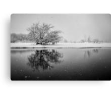 SnowAlone Canvas Print