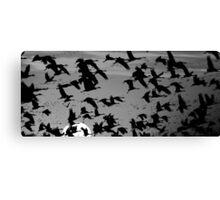 Crane Sunset Canvas Print