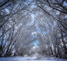 Winters Church by Bob Larson