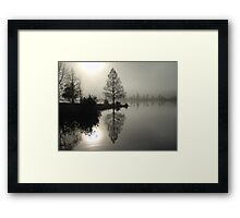 Cypress in the Fog  Framed Print