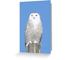 Allure Greeting Card