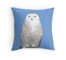 Allure Throw Pillow