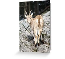 This is my good side Greeting Card