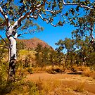 Roadside, Kimberley, Western Australia. by johnrf