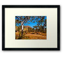 Roadside, Kimberley, Western Australia. Framed Print
