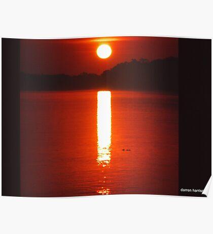 Kakadu sunset Poster
