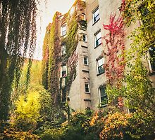 Autumn - East Village - New York City by Vivienne Gucwa